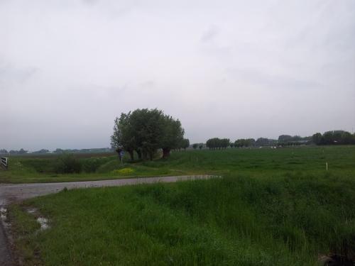 20130524 Molenaarspad Heinenoord